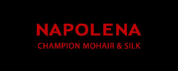 21SS NAPOLENA – CHAMPION MOHAIR & SILK | ナポレナ – チャンピオンモヘア&シルク